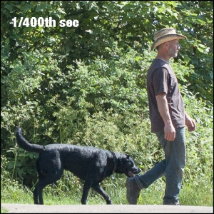 man and dog walking, 1/400th sec