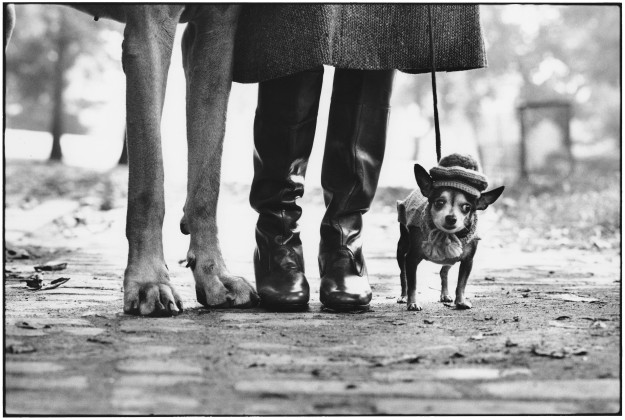 Elliott Erwitt, New York, 1974